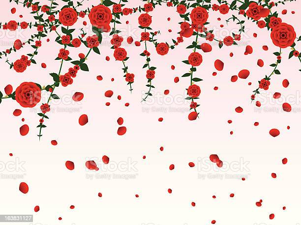 Hanging roses background illustration id163831127?b=1&k=6&m=163831127&s=612x612&h=jhyxj lvza6dhhz2bc n gdbovh1ikck6vof1utggai=