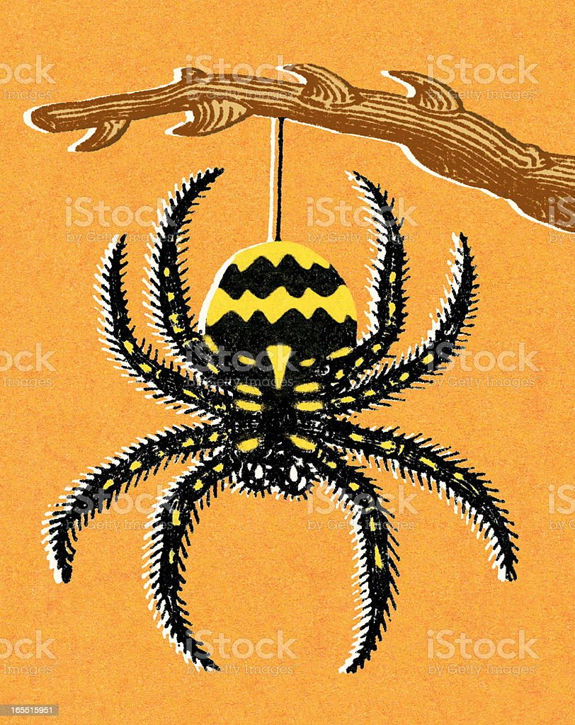 Hanging Spider royalty-free hanging spider stock vector art & more images of animal