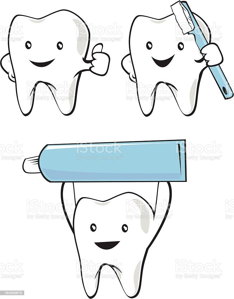 Tolle Zahnanatomie Modell Fotos - Anatomie Von Menschlichen ...
