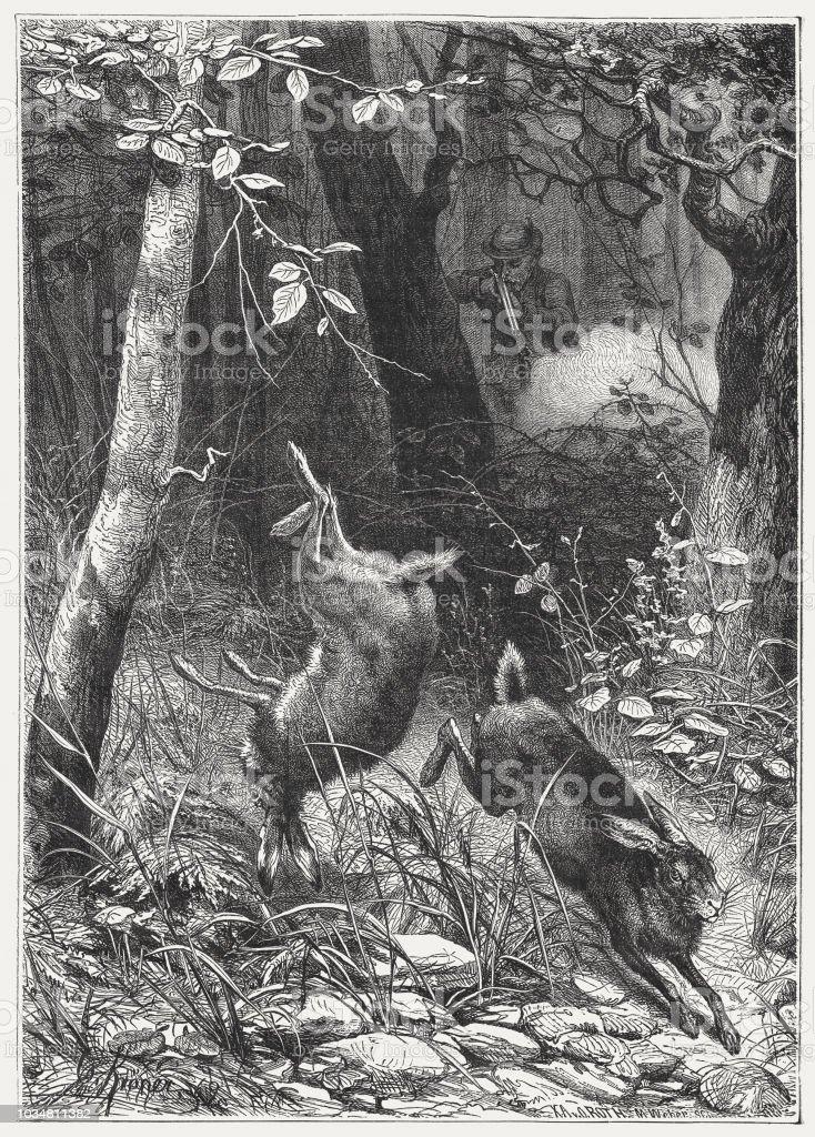 うさぎ狩り木の彫刻1876 年に公開 - 2匹のベクターアート素材や画像を ...