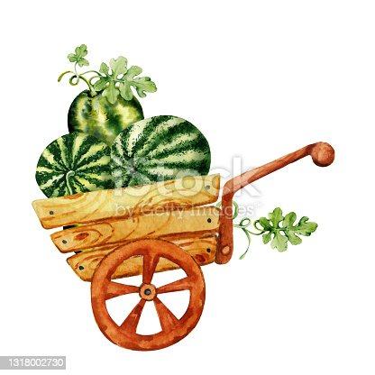 istock Harvest watermelons in a wooden cart. Hand drawn illustration isolated on white background closeup. Summer tropical fruit for design cards, covers, sticker, scrapbooking 1318002730
