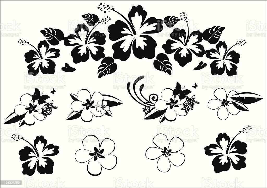 Line Art Flower Design : Hawaii floral design bw stock vector art more images of