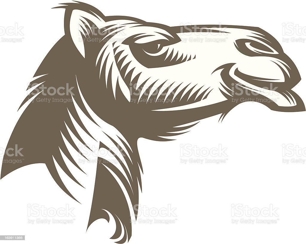 Head of a Camel royalty-free stock vector art