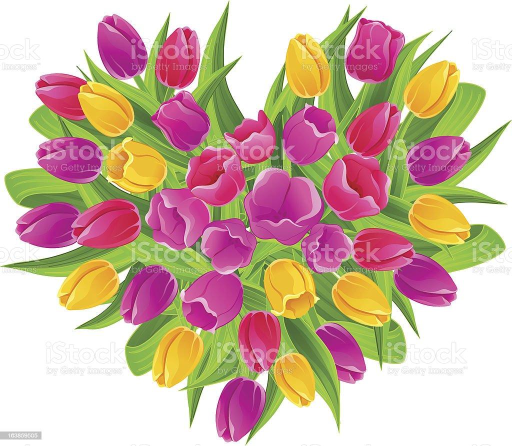 Heartshaped bouquet of multicolored tulips stock vector art more heart shaped bouquet of multi colored tulips royalty free heartshaped bouquet of multicolored izmirmasajfo