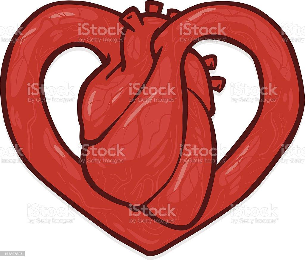 hearty heart royalty-free stock vector art