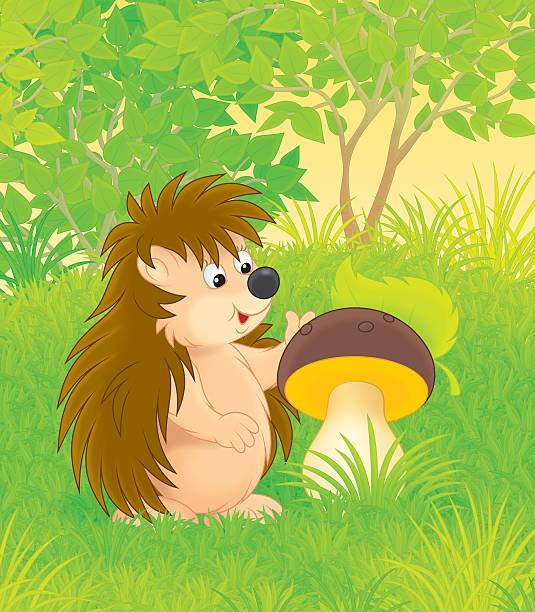 bildbanksillustrationer, clip art samt tecknat material och ikoner med hedgehog - höst plocka svamp