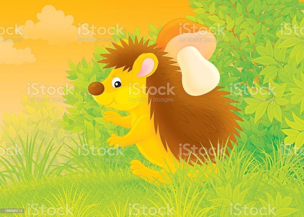 Hedgehog mushroomer royalty-free stock vector art