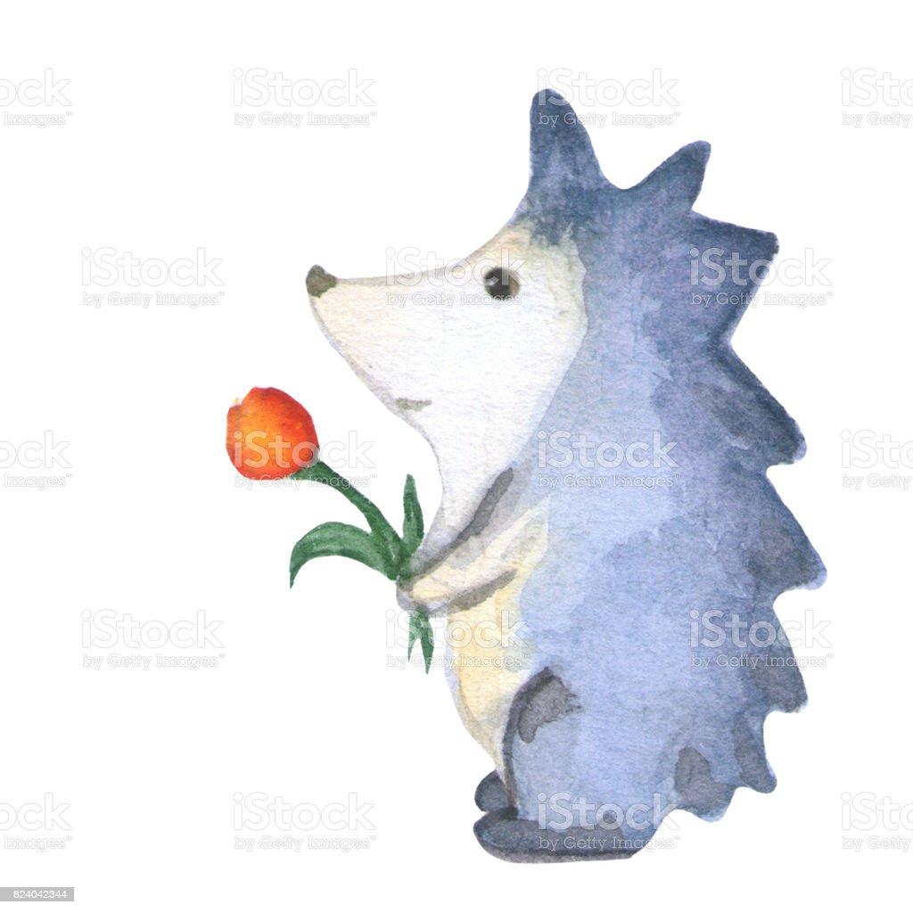 Herisson Avec Fleur Aquarelle Dessin Illustration De Pepiniere