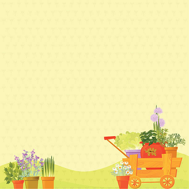 Herb Background Herb Background. Vector. EPS 8. garden center stock illustrations