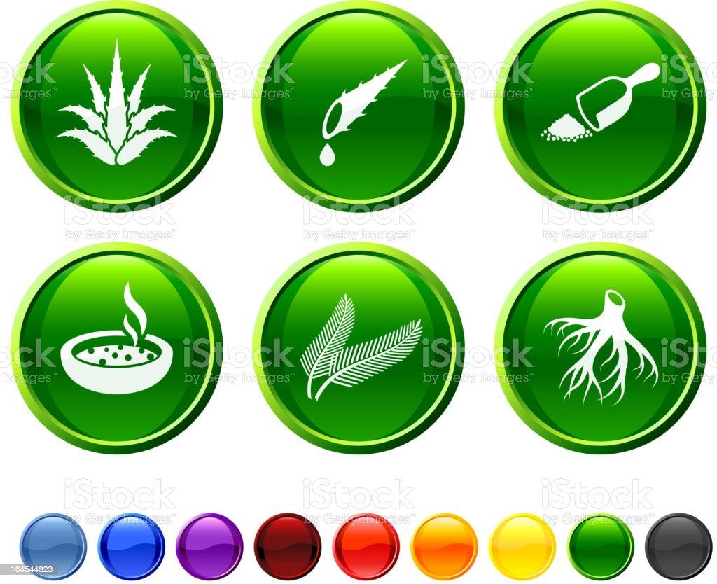 Phytothérapie icon set - Illustration vectorielle
