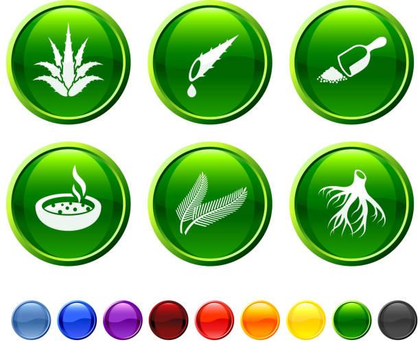 Herbal medicine icon set vector art illustration