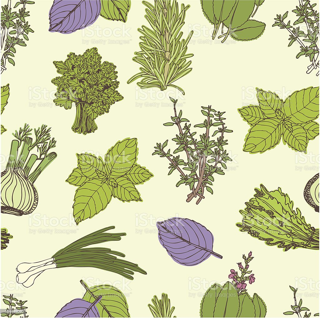 Herbs seamless pattern royalty-free herbs seamless pattern stock vector art & more images of aromatherapy