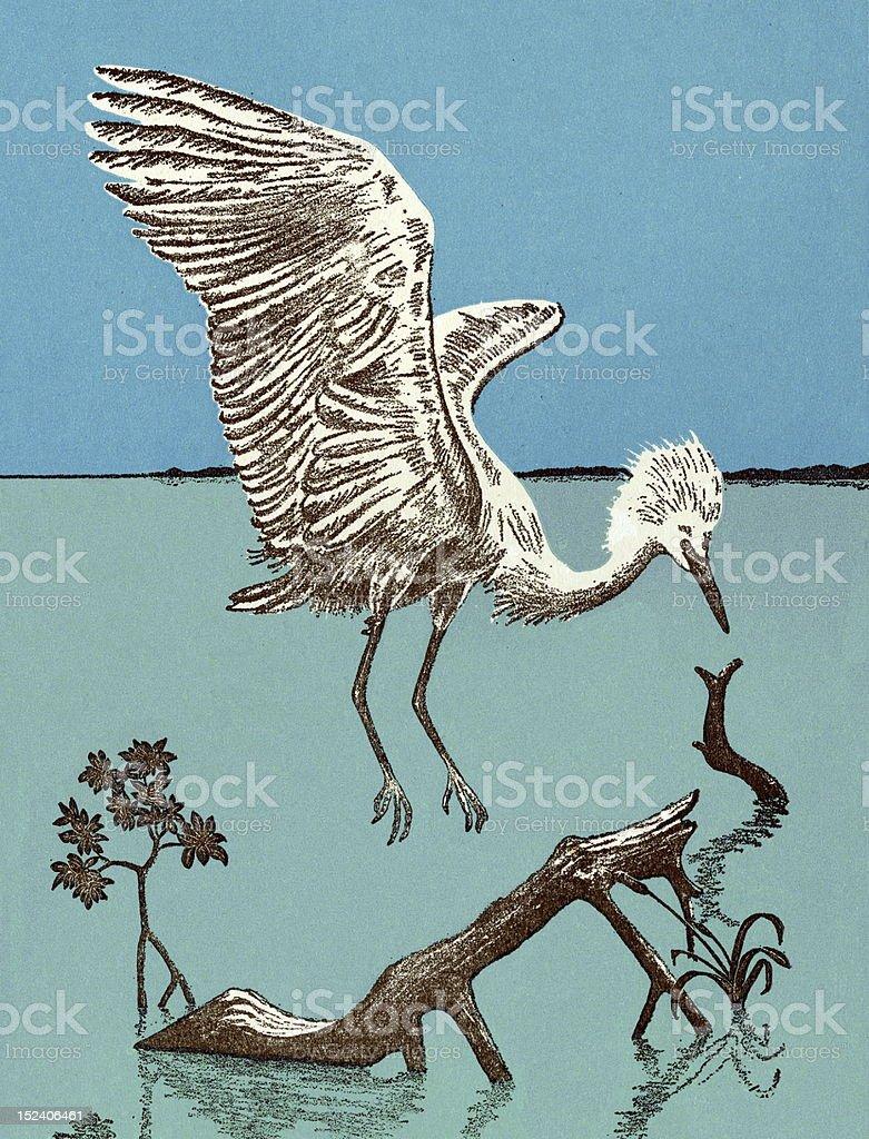 Heron Bird royalty-free stock vector art