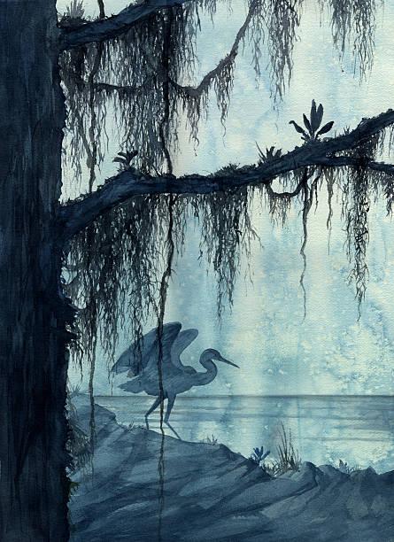 Heron in Swamp  moss stock illustrations