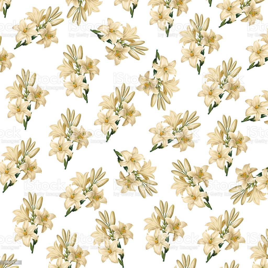High Resolution Wallpaper With White Flowers Antique Flower