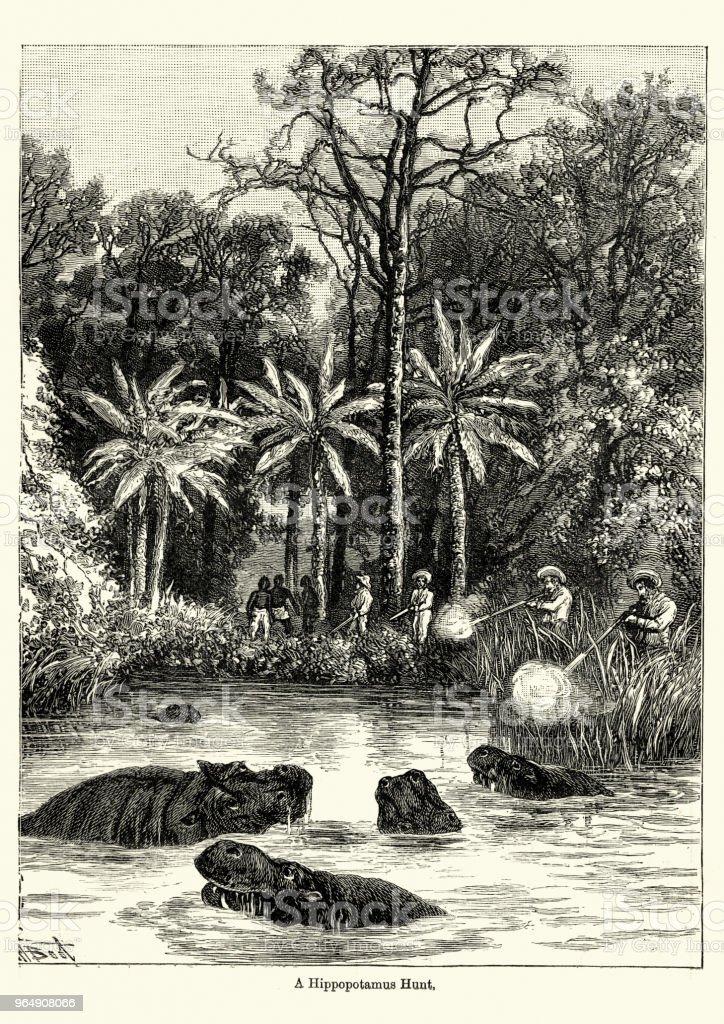 Hippopotamus hunt in the Congo, Victoriian, 19th Century royalty-free hippopotamus hunt in the congo victoriian 19th century stock vector art & more images of 1890-1899