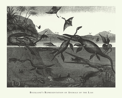 Historic Vintage, Buckland's Representation of Animals of the Lias, Fossils and Representation of Animals of the Lias Engraving Antique Illustration, Published 1851