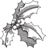 Hand-drawn vector drawing of a Holly Twig Christmas Decoration. Black-and-White sketch on a transparent background (.eps-file). Included files: EPS (v8) and Hi-Res JPG.