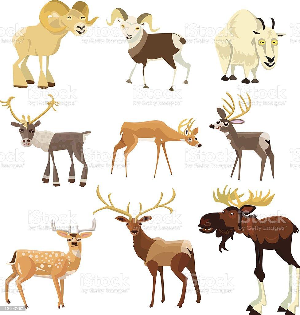 Hoofed Animals vector art illustration