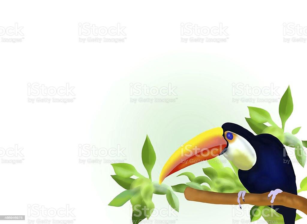 Hornbill on Branch vector art illustration