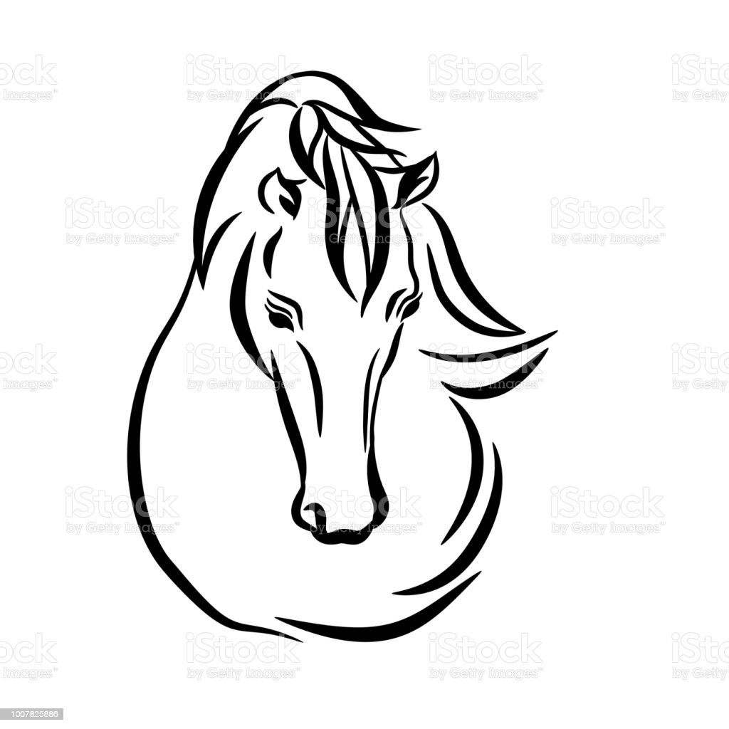Horse Head Graphic Template Raster Illustration On White Background
