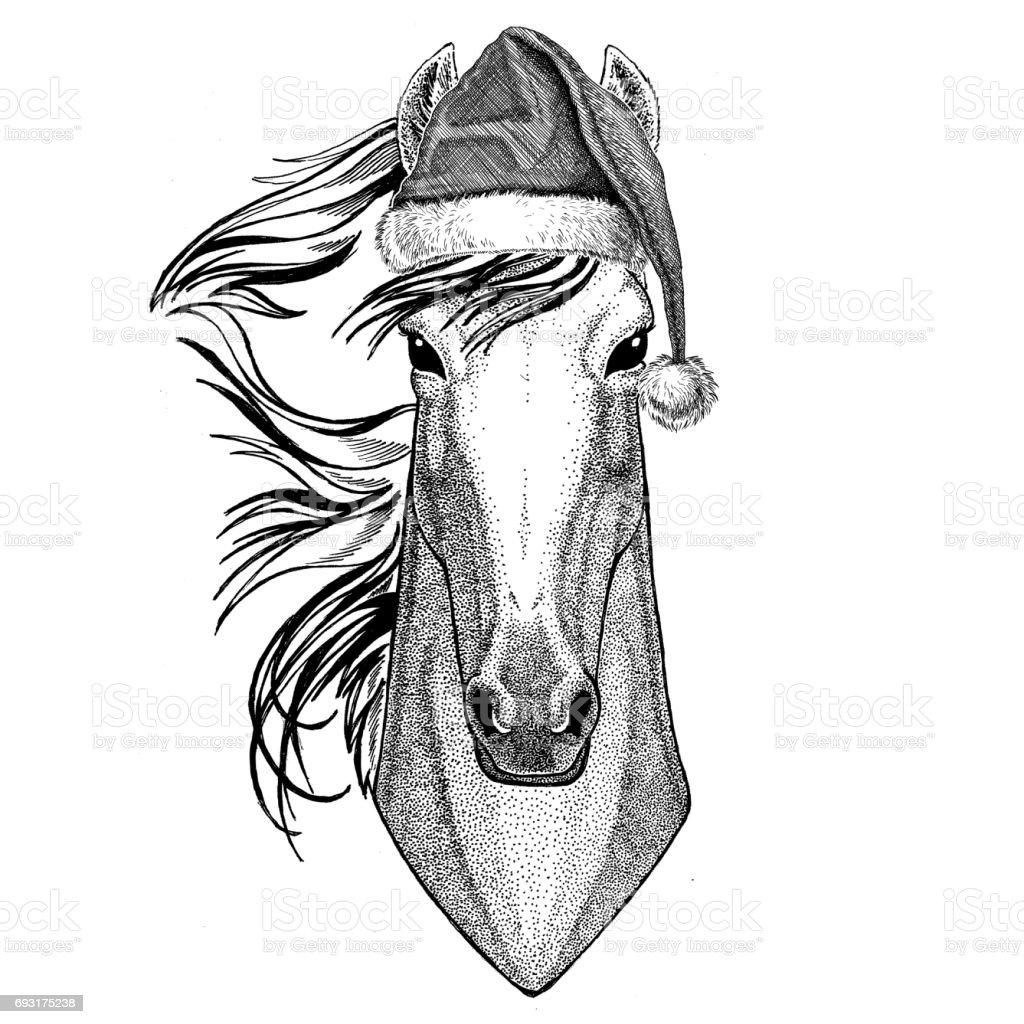 Ilustración de Caballo Hoss Caballero Corcel Courser Vistiendo ...