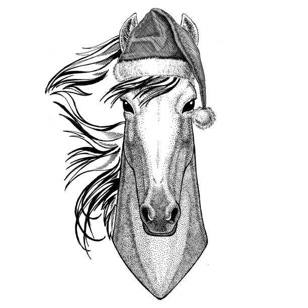 Christmas Horse Drawing.Best Drawing Of The Horse Santa Hat Illustrations Royalty