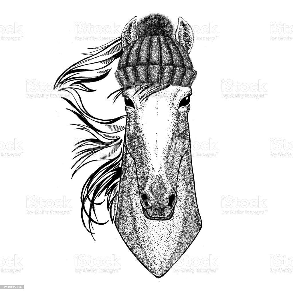 Ilustración de Caballo Hoss Caballero Corcel Courser Sombrero Hecho ...