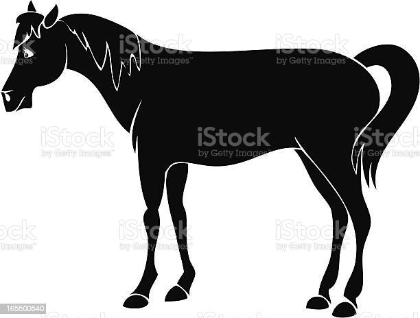 Horse illustration id165500540?b=1&k=6&m=165500540&s=612x612&h=t5yu8mbeqr6pjd mc5mkqwyhmn8ear3qrboltfr s3a=