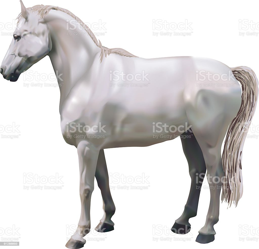 Horse royalty-free horse stock vector art & more images of activity