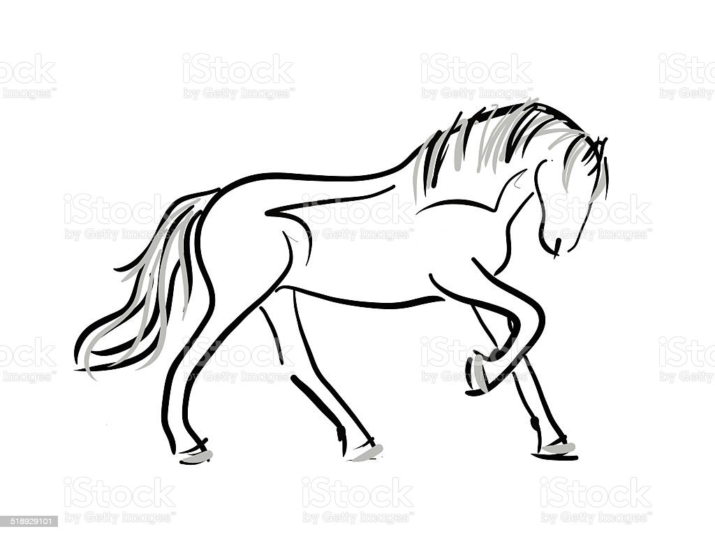 Horse Line Art Sketch Stock Illustration Download Image Now Istock