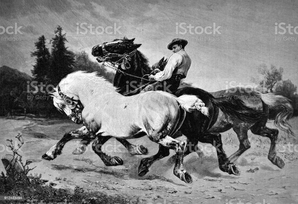 Horse Riding Exercises 1896 Stock Illustration Download Image Now Istock