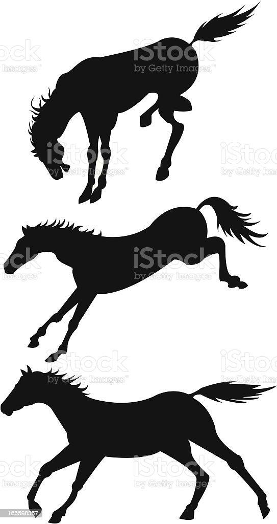 Los caballos ilustración de los caballos y más banco de imágenes de animal libre de derechos
