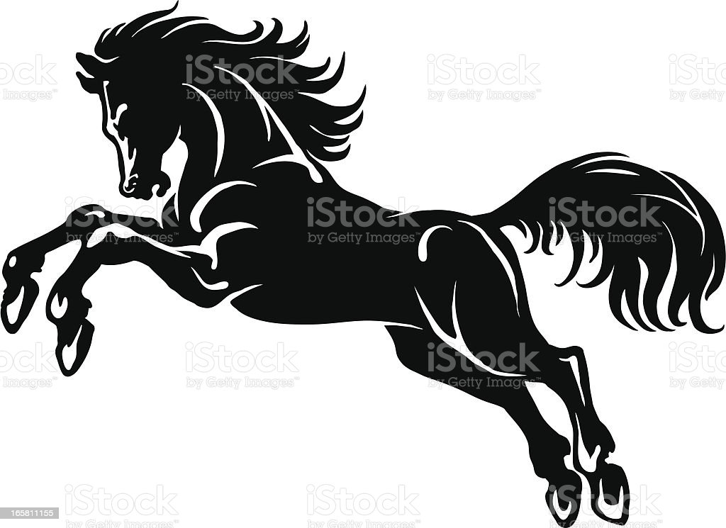 Horses vector art illustration