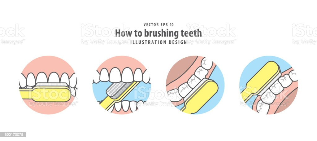 How to brushing teeth illustration vector on blue background. Dental concept. vector art illustration