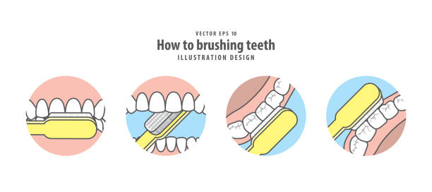 Royalty free brushing teeth clip art vector images illustrations how to brushing teeth illustration vector on blue background dental concept vector art illustration ccuart Gallery