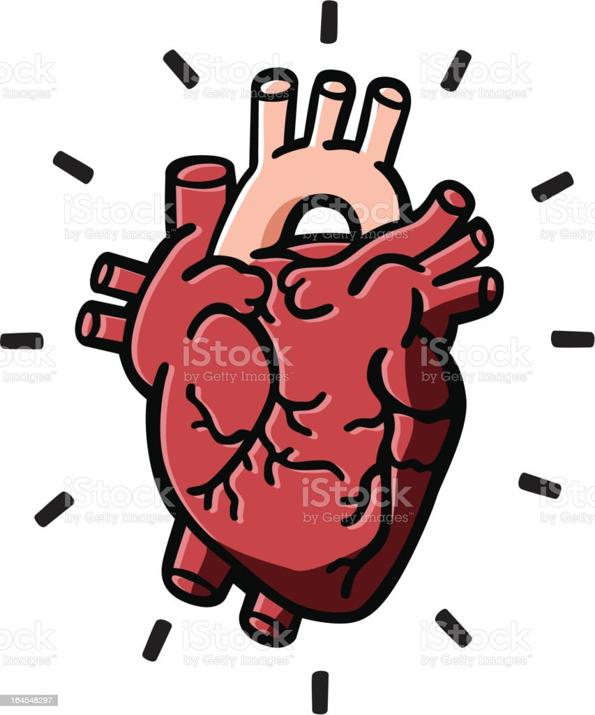 Human Heart royalty-free human heart stock vector art & more images of anatomy
