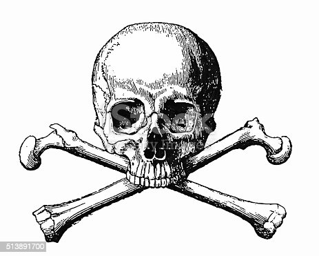 Antique illustration of a Human Skull and Bones