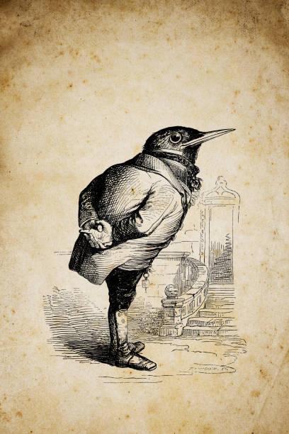 Humanized animals illustrations: Bird vector art illustration