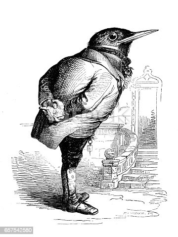 Humanized animals illustrations: Bird
