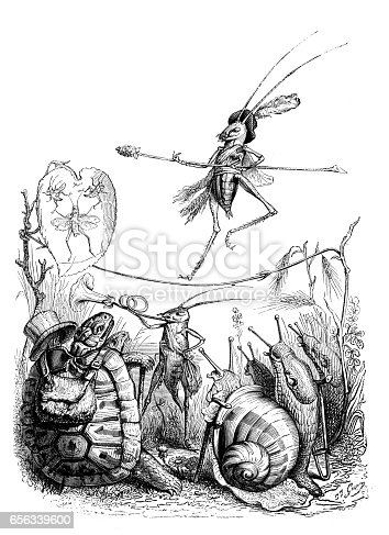 Humanized animals illustrations: Insect circus