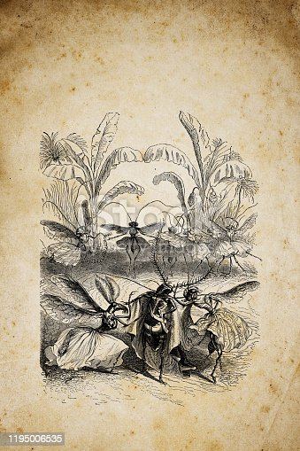 istock Humanized animals illustrations: Insects 1195006535