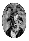 istock Humanized animals illustrations: Portrait of goat 657493054