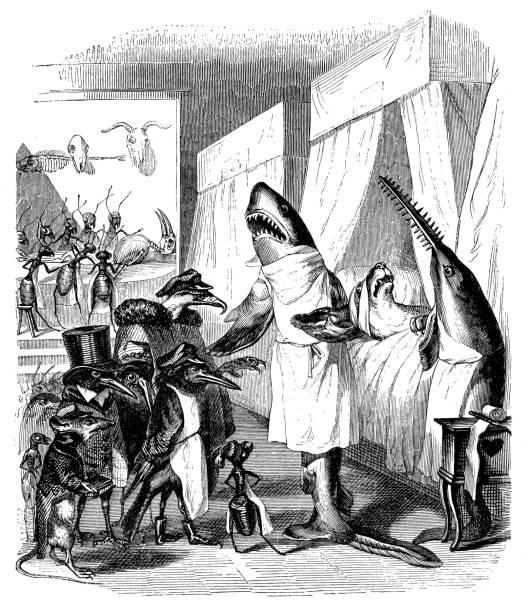 humanized animals illustrations: shark doctor - autopsy stock illustrations, clip art, cartoons, & icons