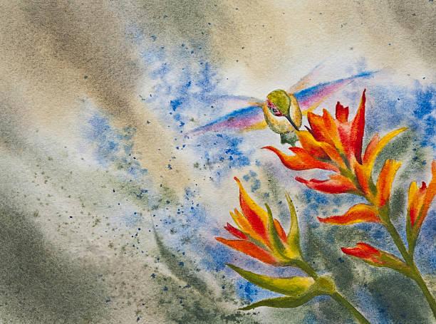 Hummingbird Feeding On Wildflower vector art illustration