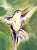istock Hummingbird Happiness 173840232