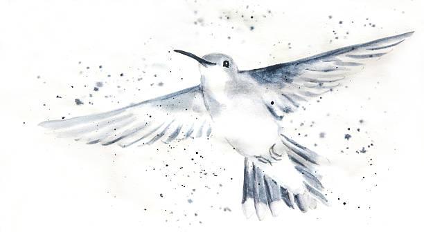 Hummingbird In Motion vector art illustration