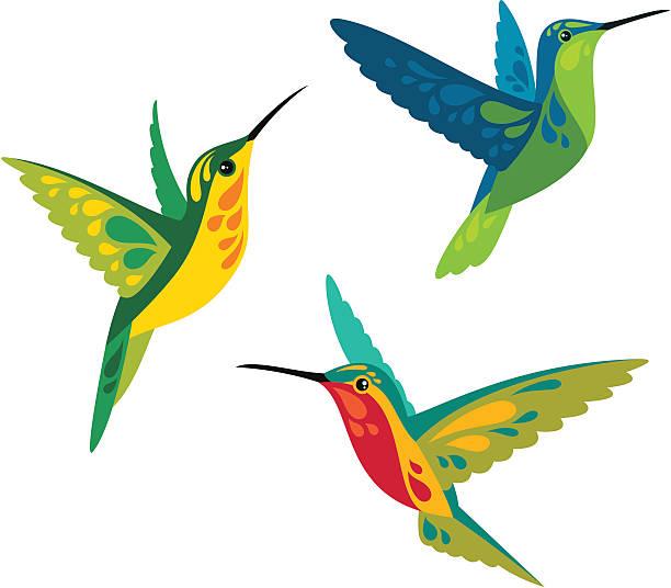 Hummingbirds Stylized hummingbirds hummingbird stock illustrations