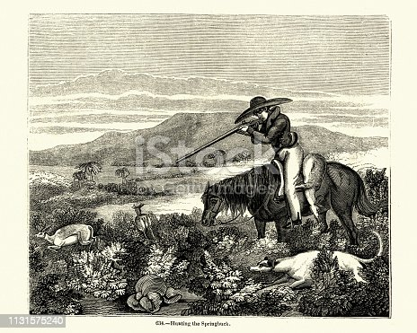 Vintage engraving Hunting for Springbok, 19th Century