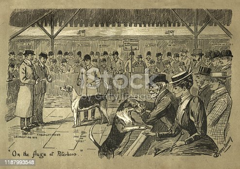 Vintage engraving of Hunting hounds for sale, Peterborough agricultural show, Victorian, 19th Century.  On the flags at Peterboro...